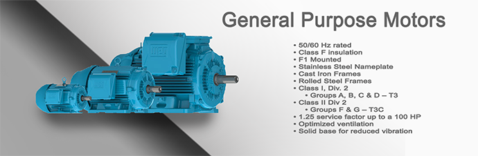 General Purpose Motor Product Page